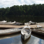 The Maryland Department of Health and Mental Hygiene wants comments from the public on proposed changes to regulations for Maryland summer youth camps.