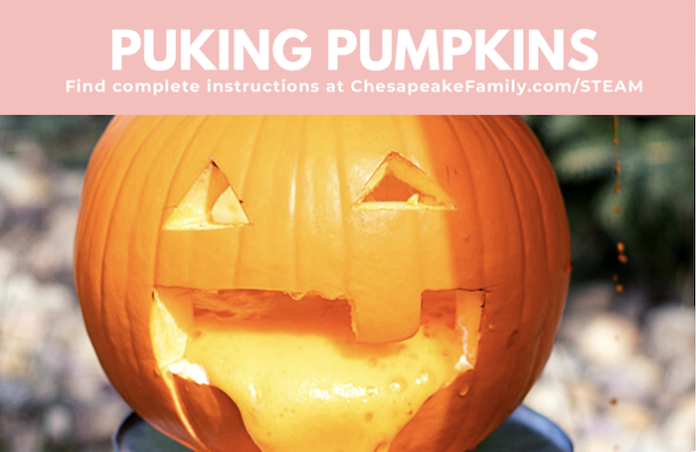 Pumpkin with orange vinegar and baking soda mixture coming out of it