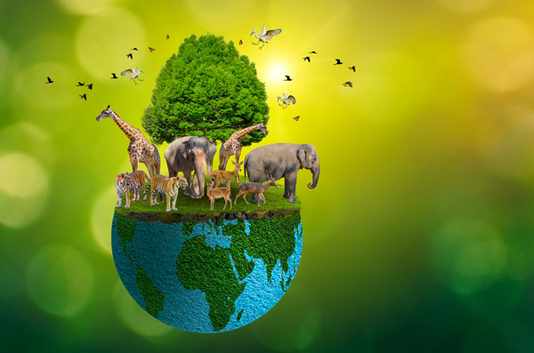 world wildlife day concept picture